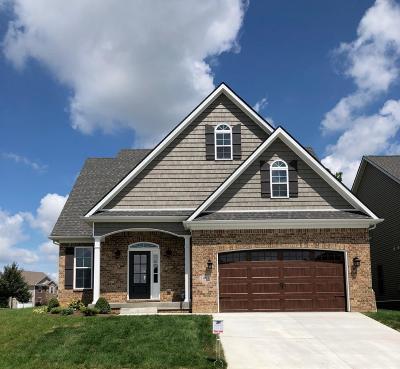 Lexington Single Family Home For Sale: 1081 Haddrell Point