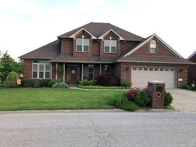 Frankfort Single Family Home For Sale: 103 Buena Vista Drive