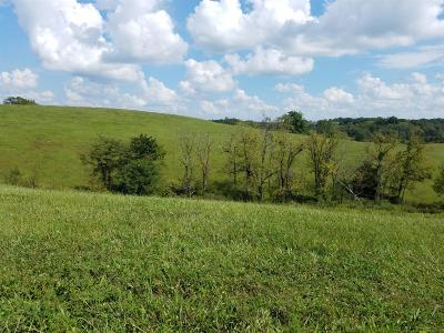 Anderson County, Fayette County, Franklin County, Henry County, Scott County, Shelby County, Woodford County Farm For Sale: 159 Westwoods Drive