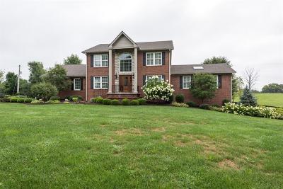 Georgetown Single Family Home For Sale: 298 W Coal Ridge Lane