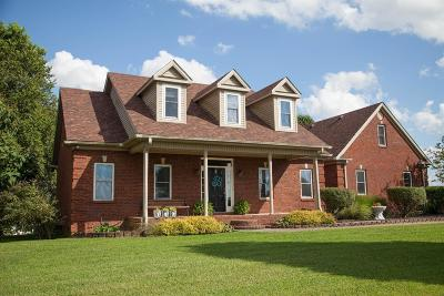 Garrard County Single Family Home For Sale: 172 Palisades Pointe Drive