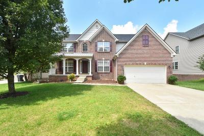Lexington Single Family Home For Sale: 869 Calypso Breeze Drive