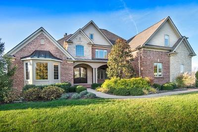 Nicholasville Single Family Home For Sale: 222 Golf Club Drive