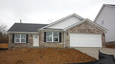 Nicholasville Single Family Home For Sale: 1204 Orchard Drive