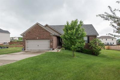 Georgetown Single Family Home For Sale: 113 Amen Corner Way