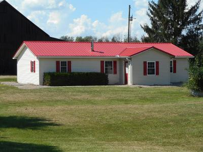 Cynthiana Single Family Home For Sale: 1004 Kentucky Highway 353
