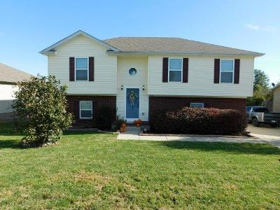 Anderson County Single Family Home For Sale: 1016 Alexandria Drive