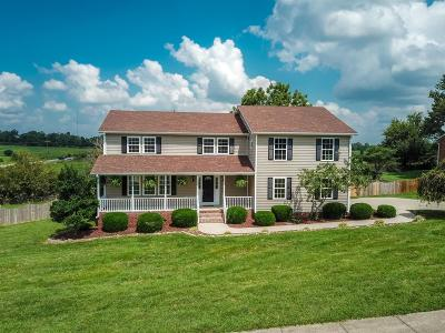 Danville Single Family Home For Sale: 104 Ridge View Road