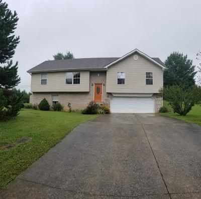 Somerset Single Family Home For Sale: 808 Hideaway Dr