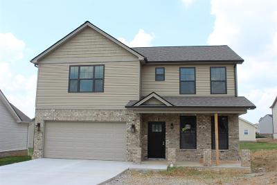Georgetown Single Family Home For Sale: 104 Sequoia Bend