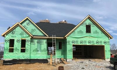 Lexington Single Family Home For Sale: 2151 Carnation Drive