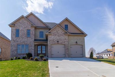 Lexington Single Family Home For Sale: 2409 Pascoli Place