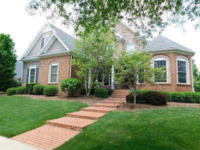 Lexington Single Family Home For Sale: 509 Mist Flower