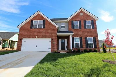 Lexington Single Family Home For Sale: 800 Hollyhock Drive