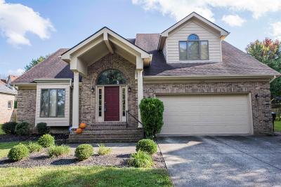 Lexington Single Family Home For Sale: 780 Andover Village Drive