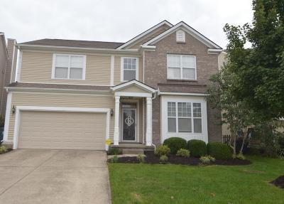 Lexington Single Family Home For Sale: 4452 Walnut Creek Drive