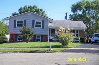 Single Family Home For Sale: 721 Damel Court