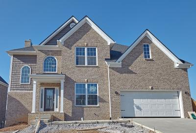 Georgetown Single Family Home For Sale: 166 Inverness Lane