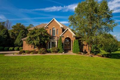 Danville Single Family Home For Sale: 1044 Riva Ridge