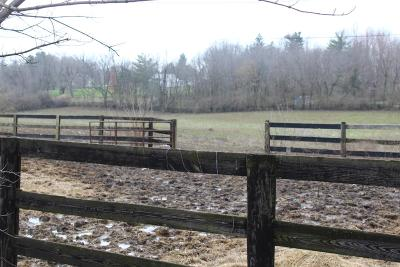 Anderson County, Fayette County, Franklin County, Henry County, Scott County, Shelby County, Woodford County Farm For Sale: 238 Swigert Avenue