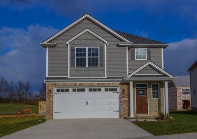 Lexington Single Family Home For Sale: 3505 Polo Club Boulevard