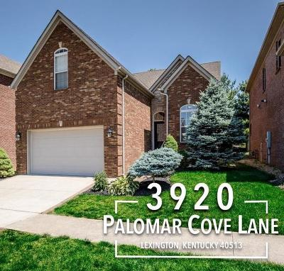 Lexington Single Family Home For Sale: 3920 Palomar Cove Lane