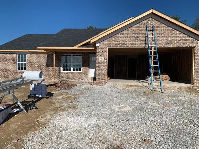 Single Family Home For Sale: 349 Southern Aster Trail