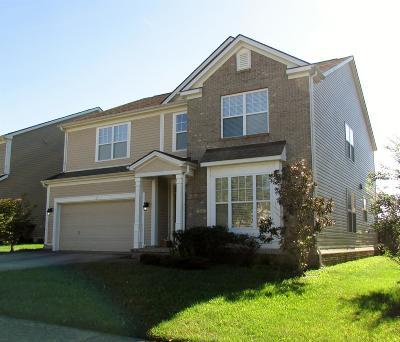 Lexington Single Family Home For Sale: 260 Hays Boulevard
