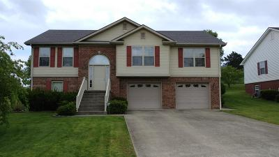 Berea Single Family Home For Sale: 112 Lee Paige Ct