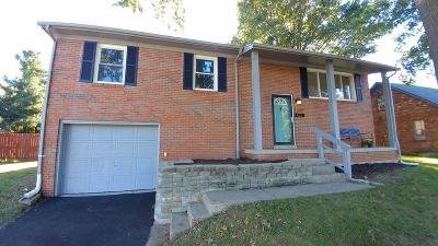 Lexington Single Family Home For Sale: 520 Shaftsbury