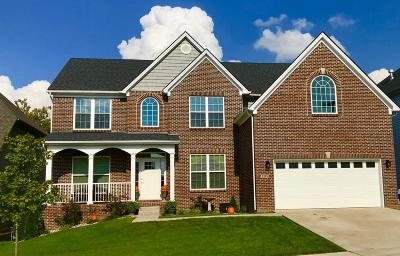 Lexington Single Family Home For Sale: 3265 Tranquility Point