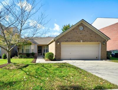 Single Family Home For Sale: 2093 Allegheny Way