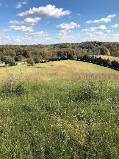Anderson County, Fayette County, Franklin County, Henry County, Scott County, Shelby County, Woodford County Farm For Sale: 127 N Owenton Road