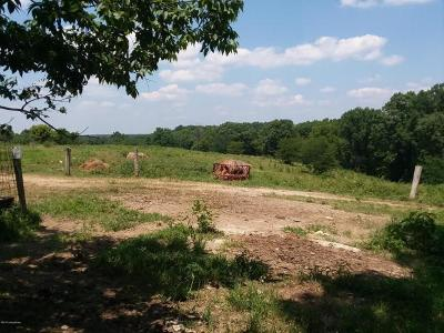 Anderson County, Fayette County, Franklin County, Henry County, Scott County, Shelby County, Woodford County Farm For Sale: 2 Chilton Lane