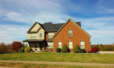 Richmond Single Family Home For Sale: 413 Shady Brook Drive