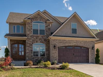 Lexington Single Family Home For Sale: 3732 Stolen Horse