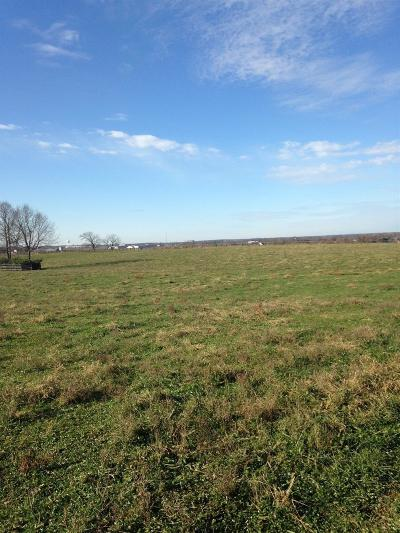 Anderson County, Fayette County, Franklin County, Henry County, Scott County, Shelby County, Woodford County Farm For Sale: 113 W Stone Horse Lane
