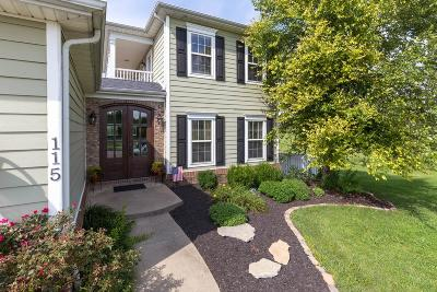 Georgetown Single Family Home For Sale: 115 Falls Creek Drive