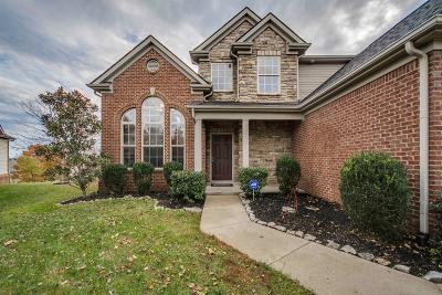 Lexington Single Family Home For Sale: 536 Hawks Nest Point