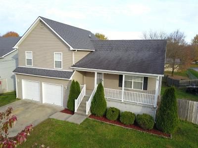 Winchester Single Family Home For Sale: 202 Alene Court