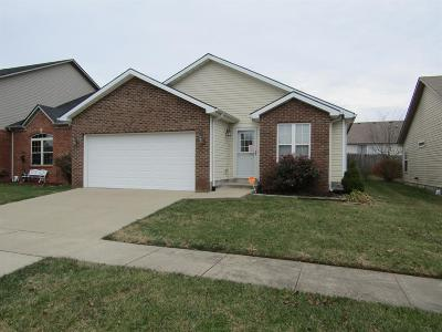 Frankfort Single Family Home For Sale: 220 Palmer Drive