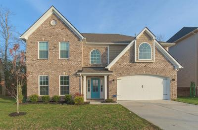 Single Family Home For Sale: 905 Henderson Drive