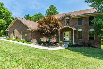 Georgetown Single Family Home For Sale: 119 Winding View Trail