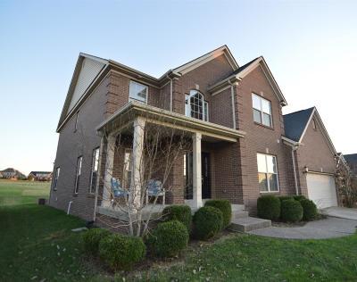 Single Family Home For Sale: 252 Ellerslie Park Boulevard