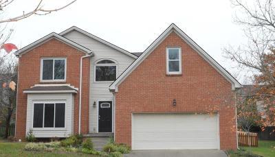 Lexington Single Family Home For Sale: 749 Emmett Creek Lane