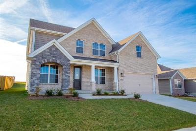 Georgetown Single Family Home For Sale: 216 Pleasant View Drive