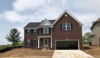 Georgetown Single Family Home For Sale: 411 General John Payne Boulevard
