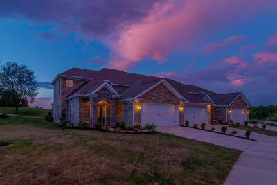 Georgetown Single Family Home For Sale: 249 Ikebana Drive