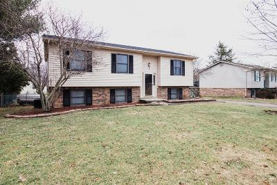 Winchester Single Family Home For Sale: 709 Princeton Drive