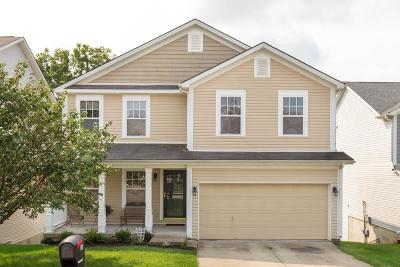 Georgetown Single Family Home For Sale: 145 Meadow View Way